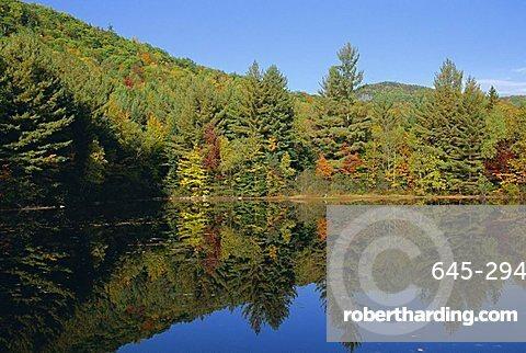 Lake reflections near Jackson, New Hampshire, New England, USA, North America