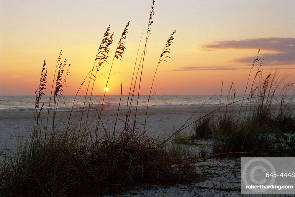 Sunset, Gulf Coast, Longboat Key,  Anna Maria Island, Beach, Florida, Usa