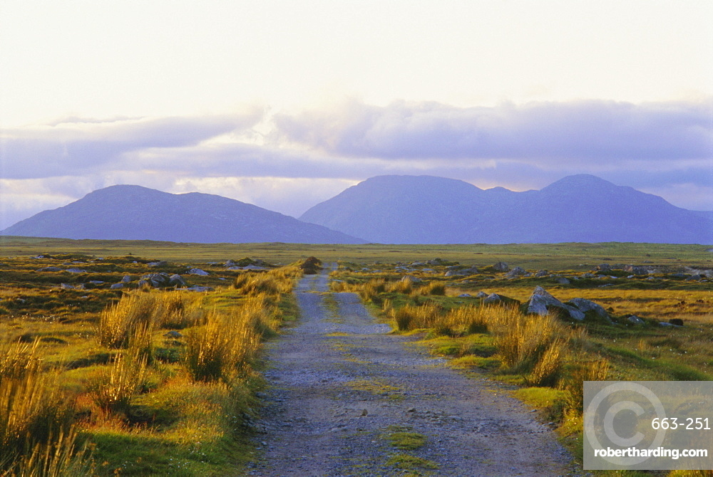 Country track and hills, County Galway, Connacht, Republic of Ireland (Eire), Europe