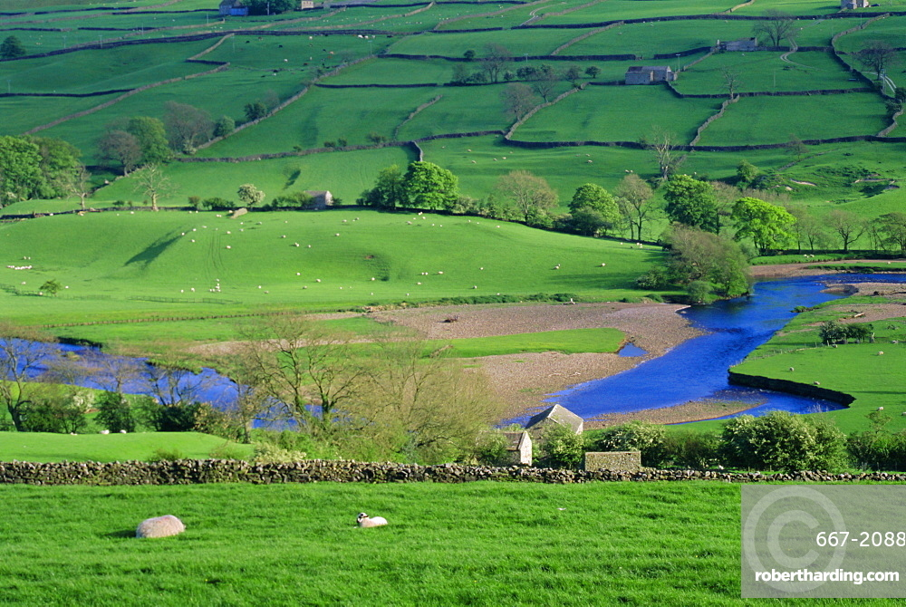 View to river at Reeth, Swaledale, Yorkshire Dales National Park, Yorkshire, England, UK, Europe