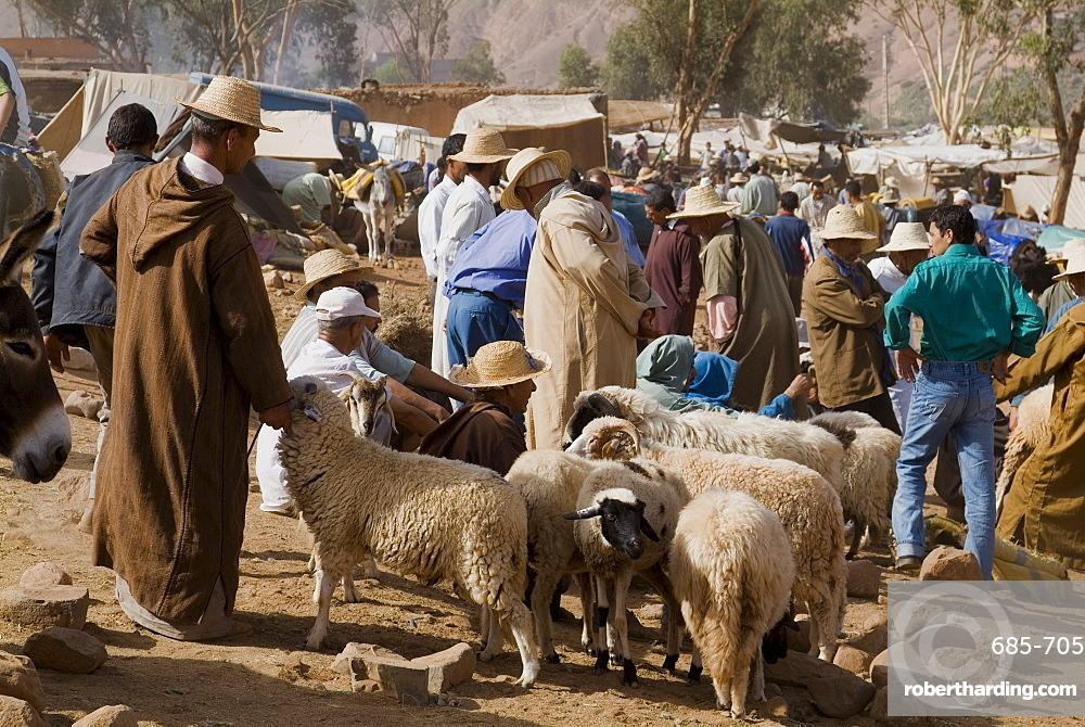 Weekly market, Tahanoute, High Atlas Mountains, Morocco, North Africa, Africa