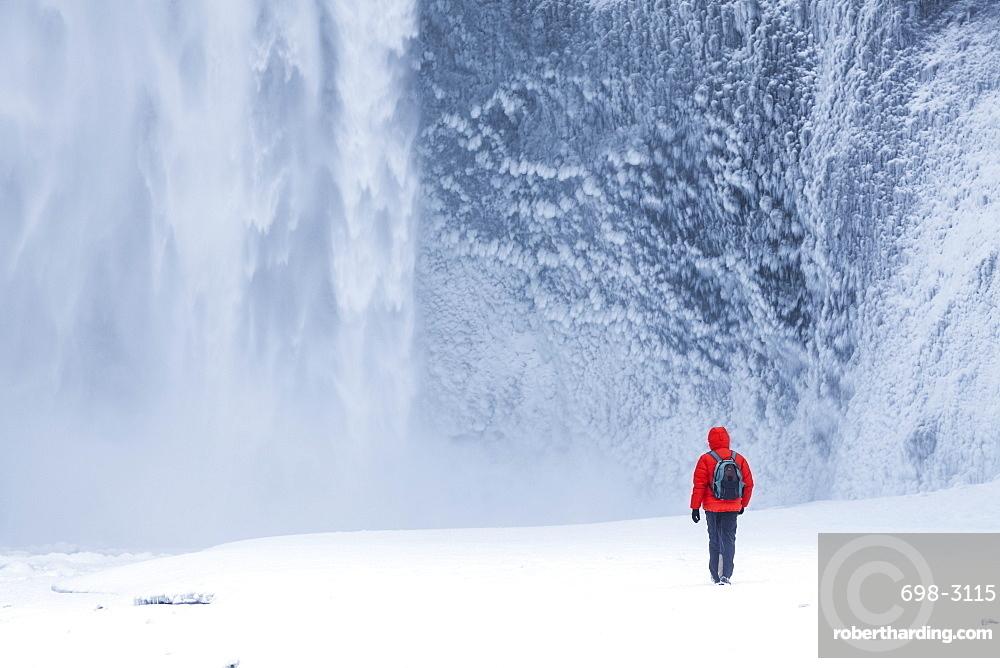 One person in red jacket walking in the snow towards Skogafoss waterfall in winter, Skogar, South Iceland, Iceland, Polar Regions