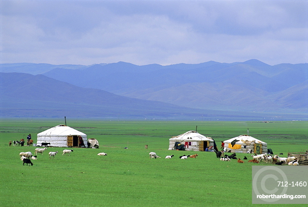 Gers (yurts) in Ovorkhangai Province, Mongolia, Asia