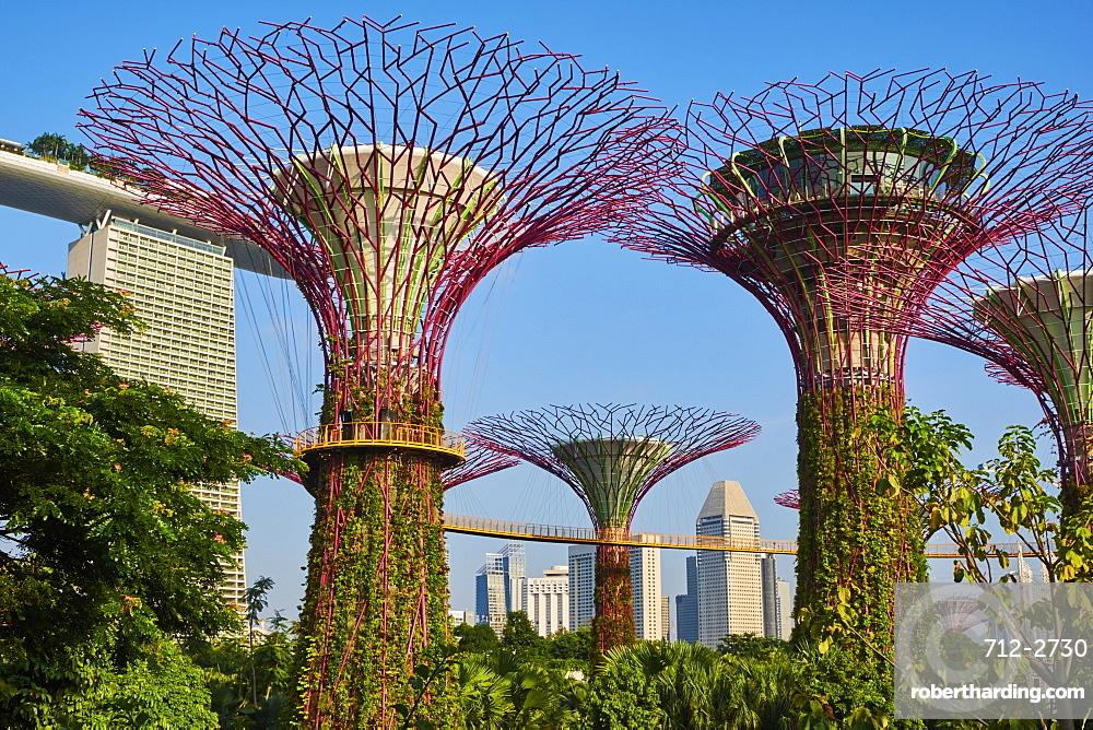 Supertree Grove, Garden By the Bay, botanic garden, Marina Bay, Singapore, Southeast Asia, Asia