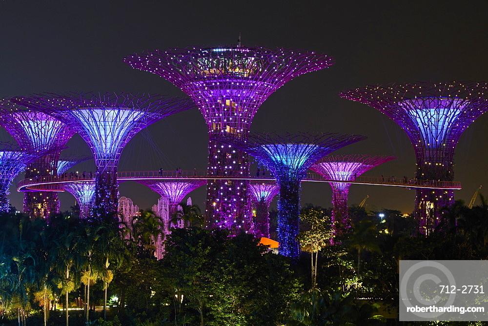Supertree Grove at night, Garden By the Bay, botanic garden, Marina Bay, Singapore, Southeast Asia, Asia