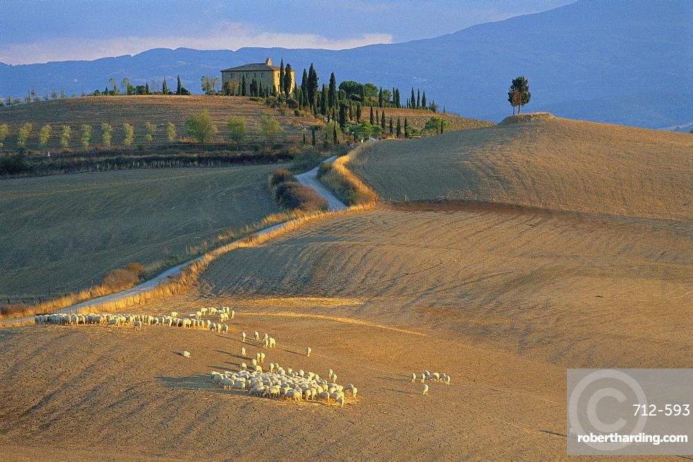 Sienna Province, Farmhouse near Pienza, Tuscany, Italy