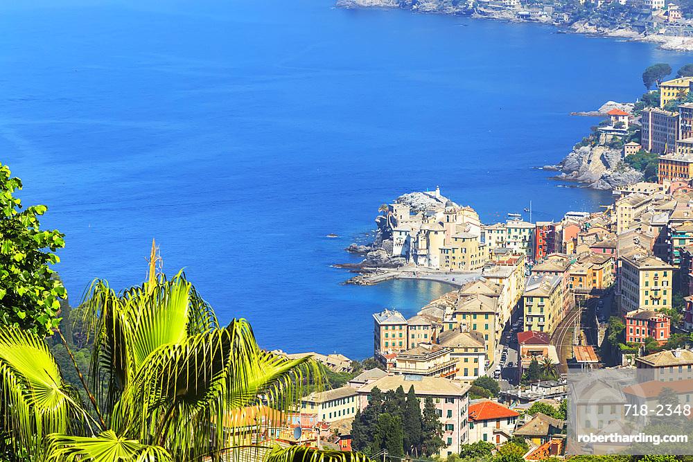 Elevated view of Camogli and Gulf of Paradise, Camogli, Riviera di Levante, Liguria, Italy, Europe