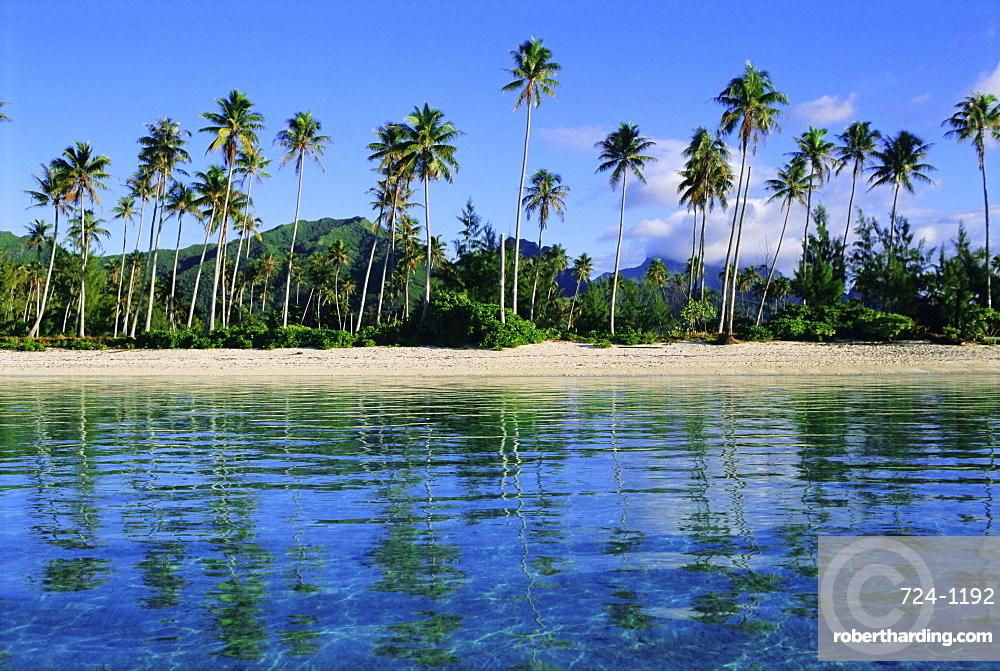 East coast, Motu Nao Nao, Raiatea Island, Society Islands archipelago, French Polynesia, South Pacific, Pacific
