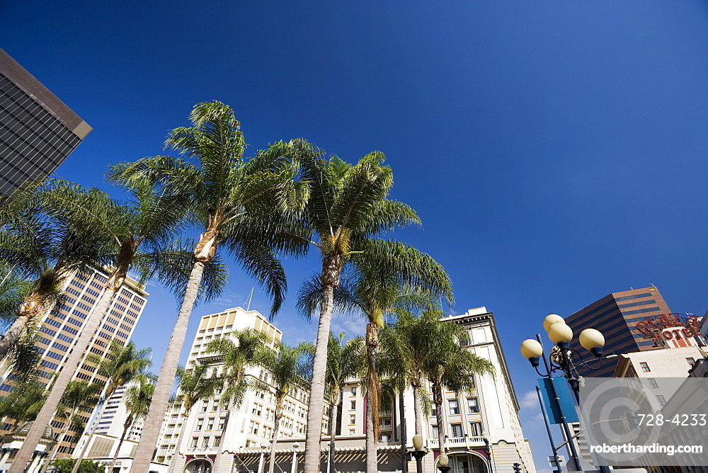 Palms, Downtown, San Diego, California, United States of America, North America