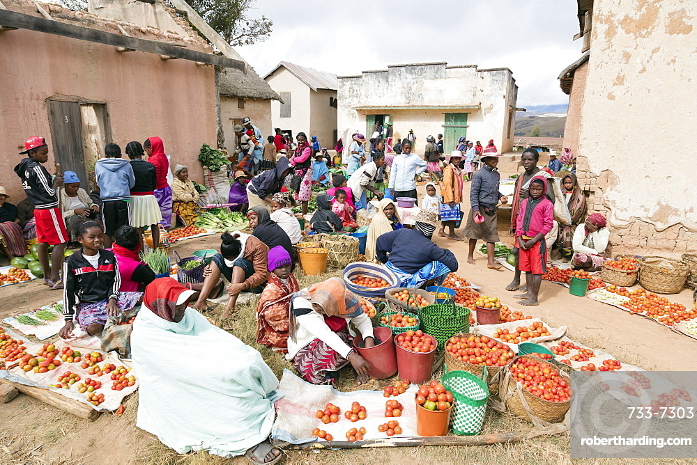 Vegetable sellers, Sendrisoa weekly market, near Ambalavao, central area, Madagascar, Africa