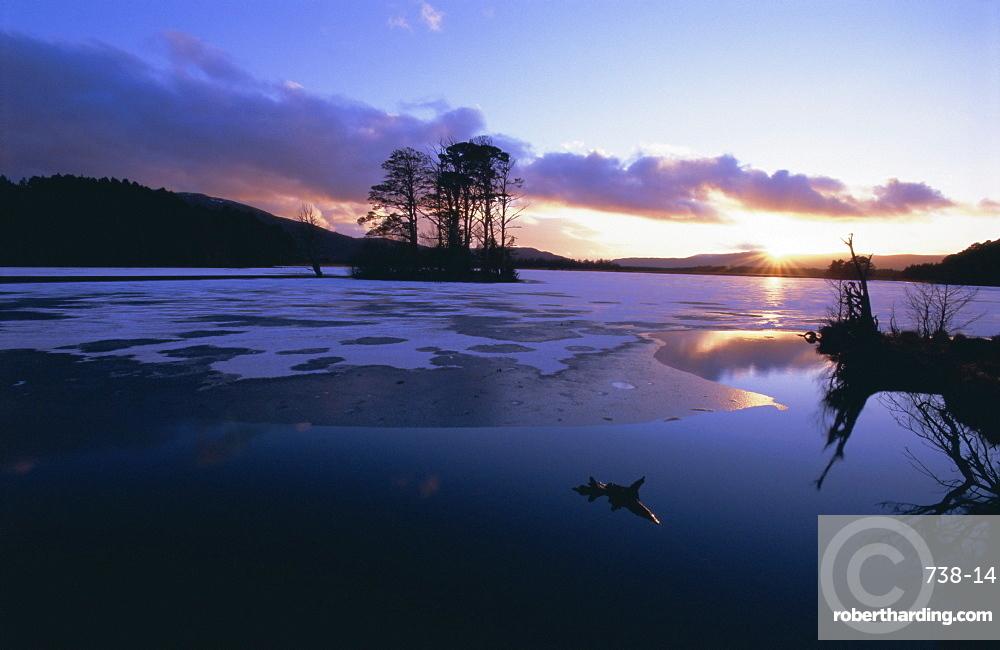 Winter landscape, Loch Mallachie, Speyside, Scotland, UK, Europe
