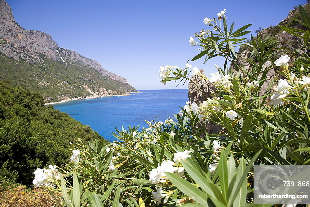 The blue sea at Santa Maria Navarrese, Gulf of Orosei, Sardinia, Italy, Mediterranean, Europe