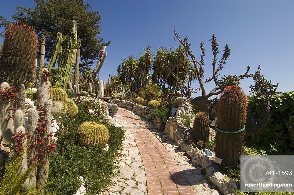 Botanic garden (Jardin Exotique), Eze village, Alpes Maritimes, Provence, Cote d'Azur, France, Europe