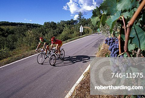 Cyclists on the road, Biking around Italy