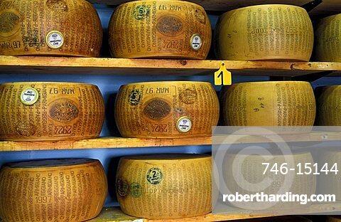Maturing of Parmiggiano Reggiano cheese, Hombre dairy, Cittanove, Emilia Romagna, Italy