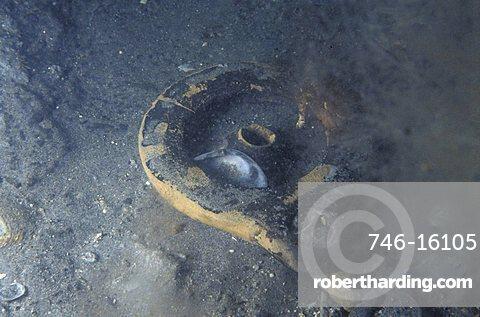 Archaeological Submarine Research, Archaeologic Park, Capo Colonna, Calabria, Italy