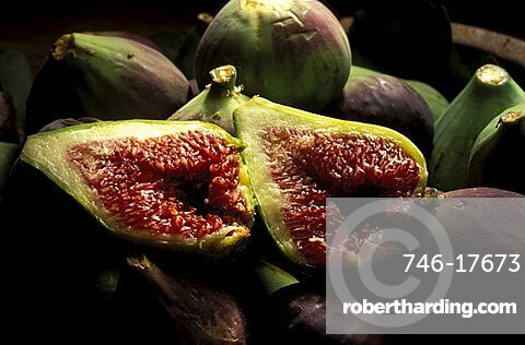 Ficus Carica, Figs, Italy