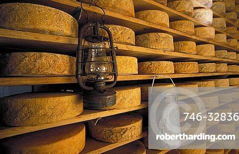 Cheese storage, Malga Casello, Brentonico, Trentino Alto Adige, Italy