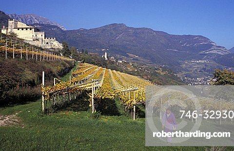 Castle, Noarna, Vallagarina, Trentino Alto Adige, Italy