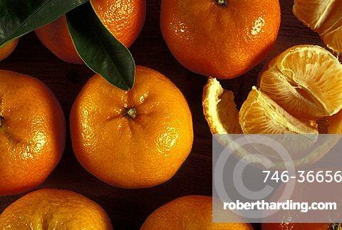 Tangerines, Italy
