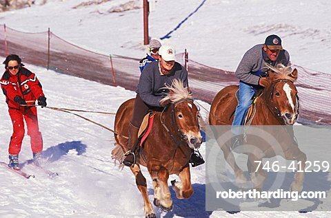 Skikjoring, Alta Badia, Trentino Alto Adige, Italy