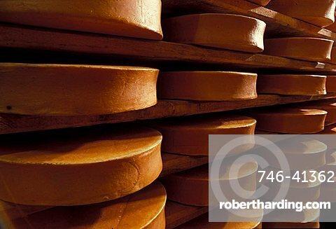 Fontina cheese, Gressoney, Valle d'Aosta, Italy