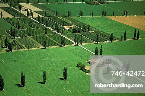 Countryside, Ferrara, Emilia Romagna, Italy
