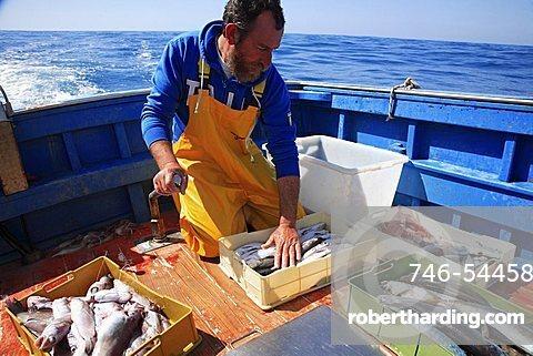 Fishing expedition, Maratea, Basilicata, Italy