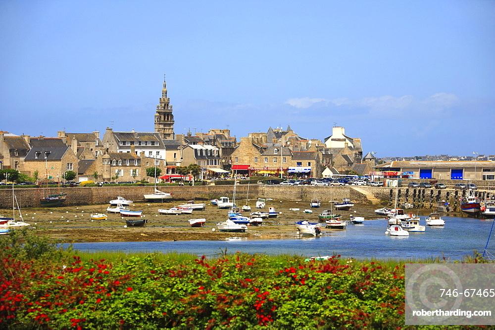 Port, Roscoff, Finistère department , Bretagne, France, Europe