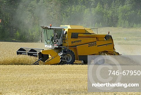 Combine harvester, Italy