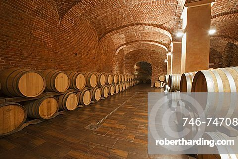 Gancia underground wine cathedral in Canelli, the barrels made by oak wood and named