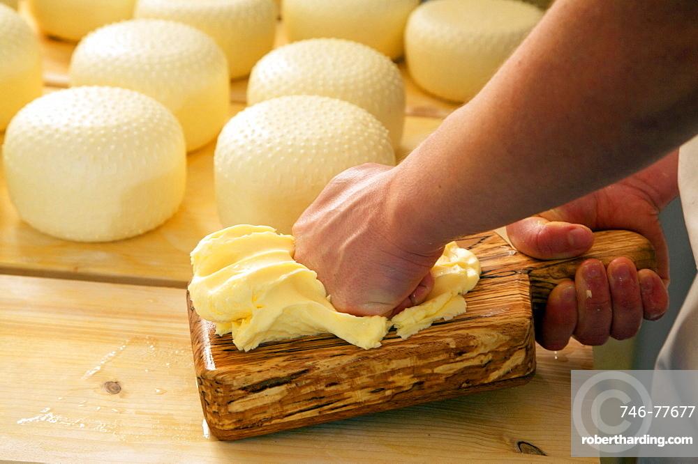 Fresh butter, Tomaselli dairy, Strigno, Valsugana, Trentino Alto Adige, Italy, Europe