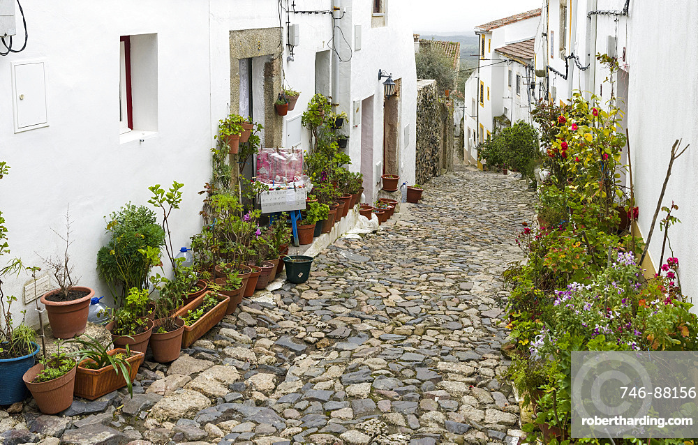 The fomer jewish quarter in Castelo de Vide.  Europe, Southern Europe, Portugal, Alentejo