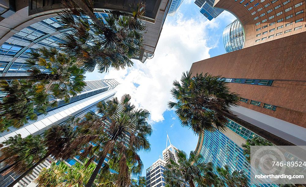 Amazing upward view of Sydney skyline.