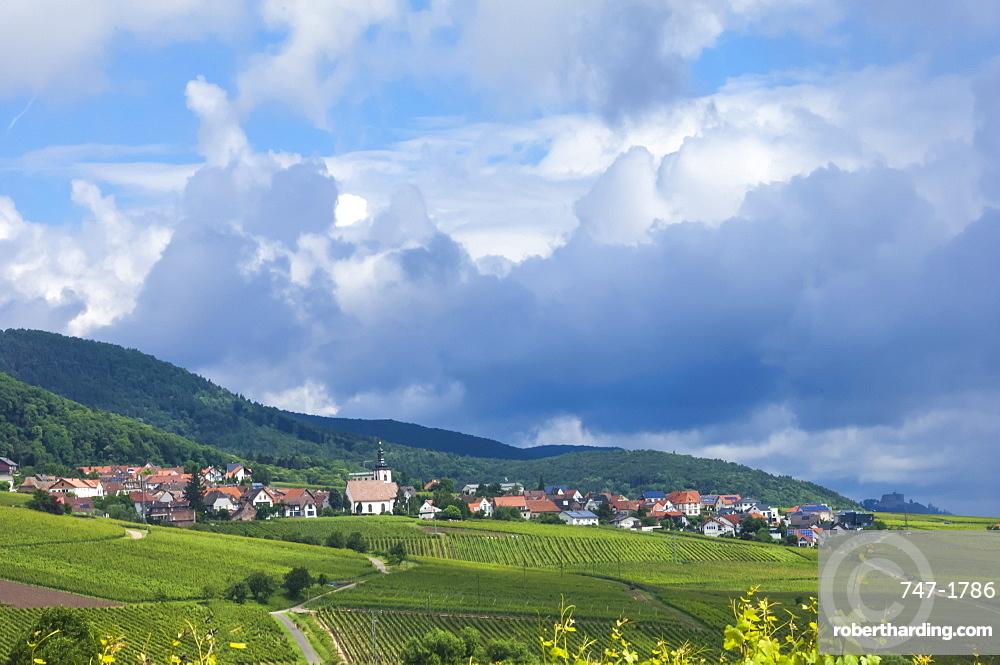 Village amongst vineyards in the Pfalz area, Germany, Europe