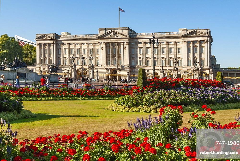 Buckingham Palace, Geraneums, London, England, UK