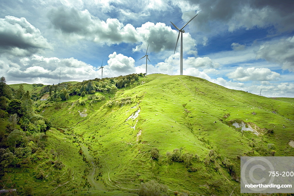 Te Apiti Wind Farm, on the lower Ruahine Ranges, near Palmerston North, Manawatu, North Island, New Zealand, Pacific