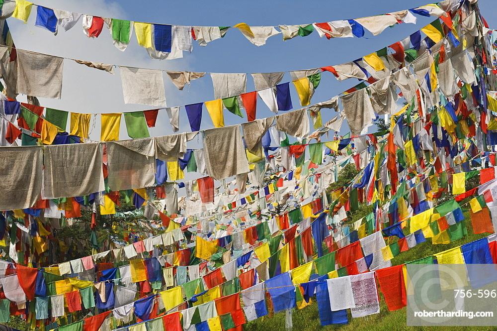 Prayer flags, McLeod Ganj, Dharamsala, Himachal Pradesh state, India, Asia