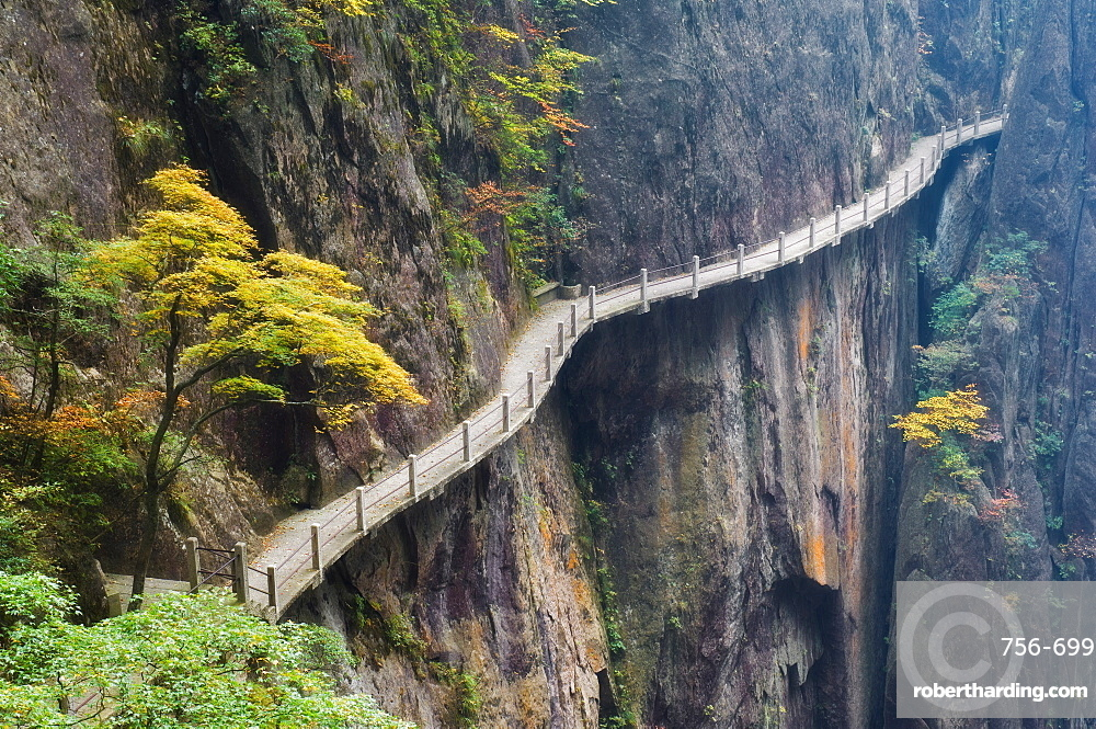 Footpath along rock face, Xihai (West Sea) Valley, Mount Huangshan (Yellow Mountain), UNESCO World Heritage Site, Anhui Province, China, Asia