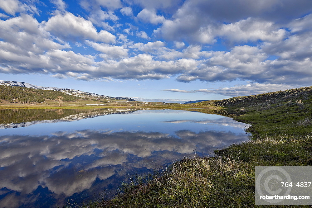 Clouds reflected in a pond, Yellowstone National Park, UNESCO World Heritage Site, Wyoming, United States of America, North America