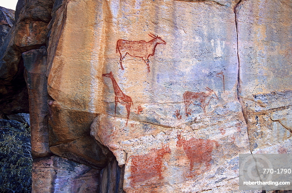 Rock art, Tsodilo Hills, UNESCO | Stock Photo