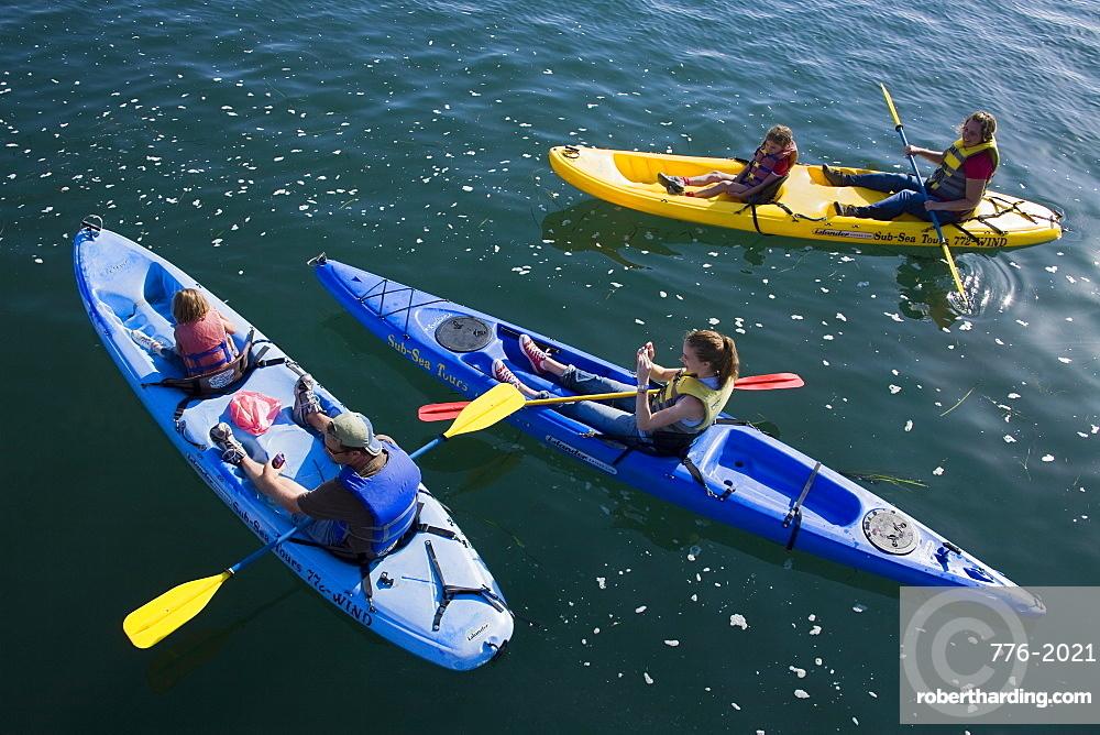 Kayak rental, Embarcadero, City of Morro Bay, San Luis Obispo County, California, United States of America, North America