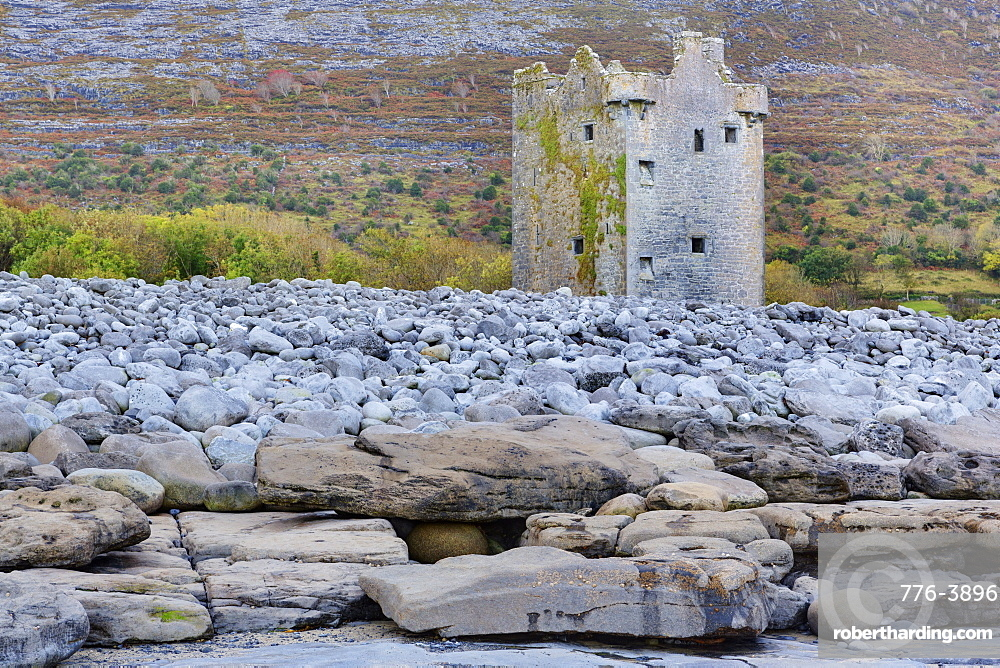 Gleninagh Castle in The Burren, County Clare, Munster, Ireland, Europe