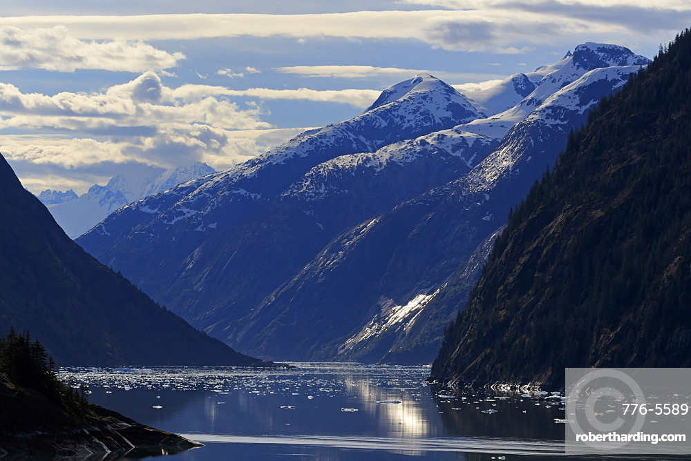 Endicott Arm, Holkham Bay, Juneau, Alaska, United States of America, North America