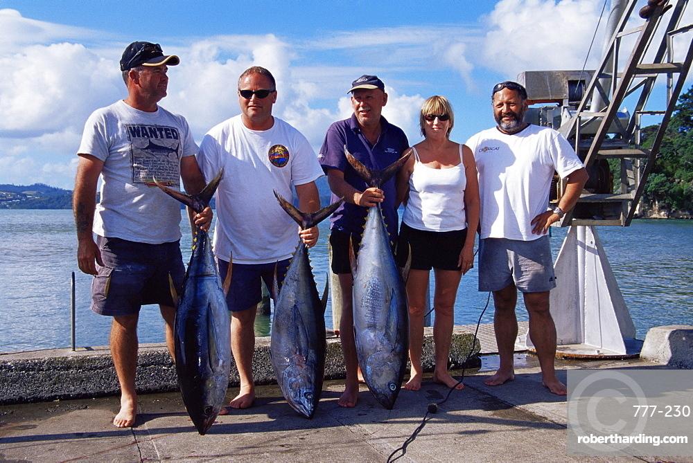 Blue fin tuna fishing contest, Whitianga Bay, Coromandel region, North Island, New Zealand, Pacific