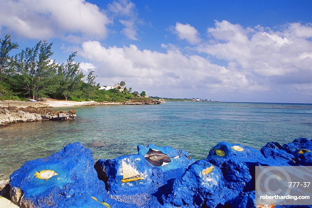 Spotts Bay, Grand Cayman Island, West Indies, Caribbean, Central America