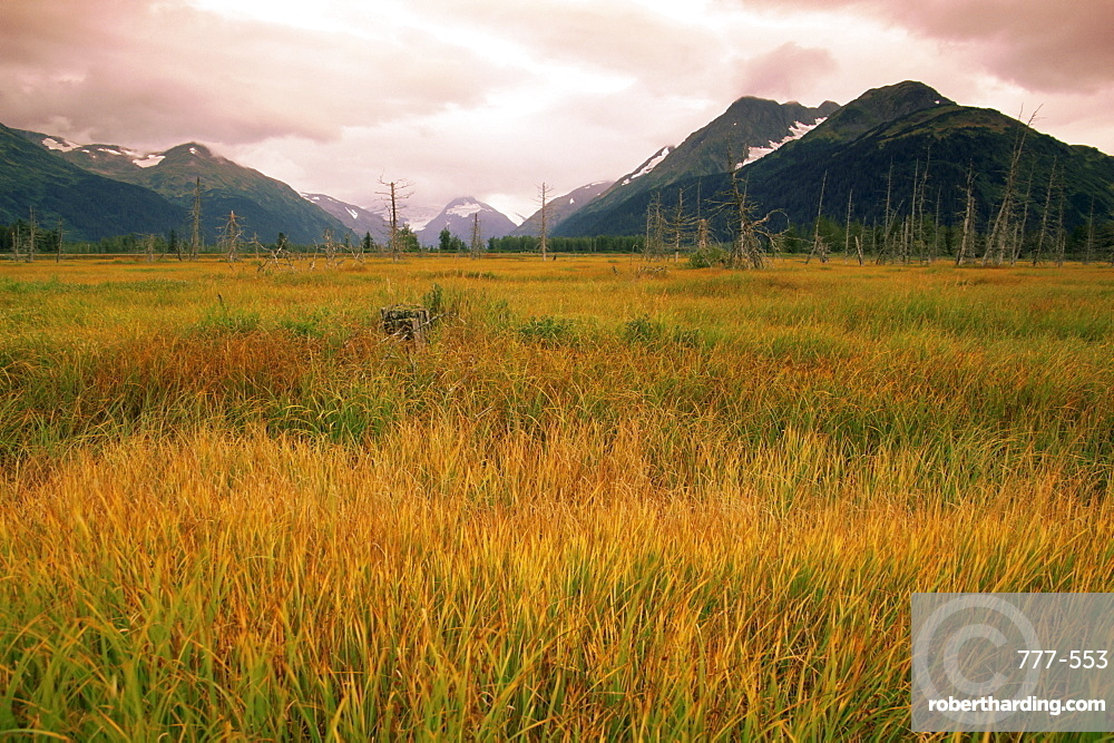 Portage region, Seward Scenic Highway, Alaska, United States of America, North America