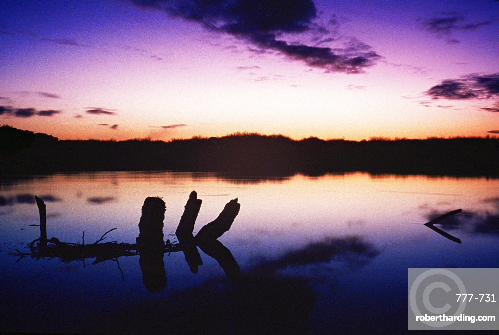 Lakes of Killarney National Park, County Kerry, Munster, Republic of Ireland, Europe
