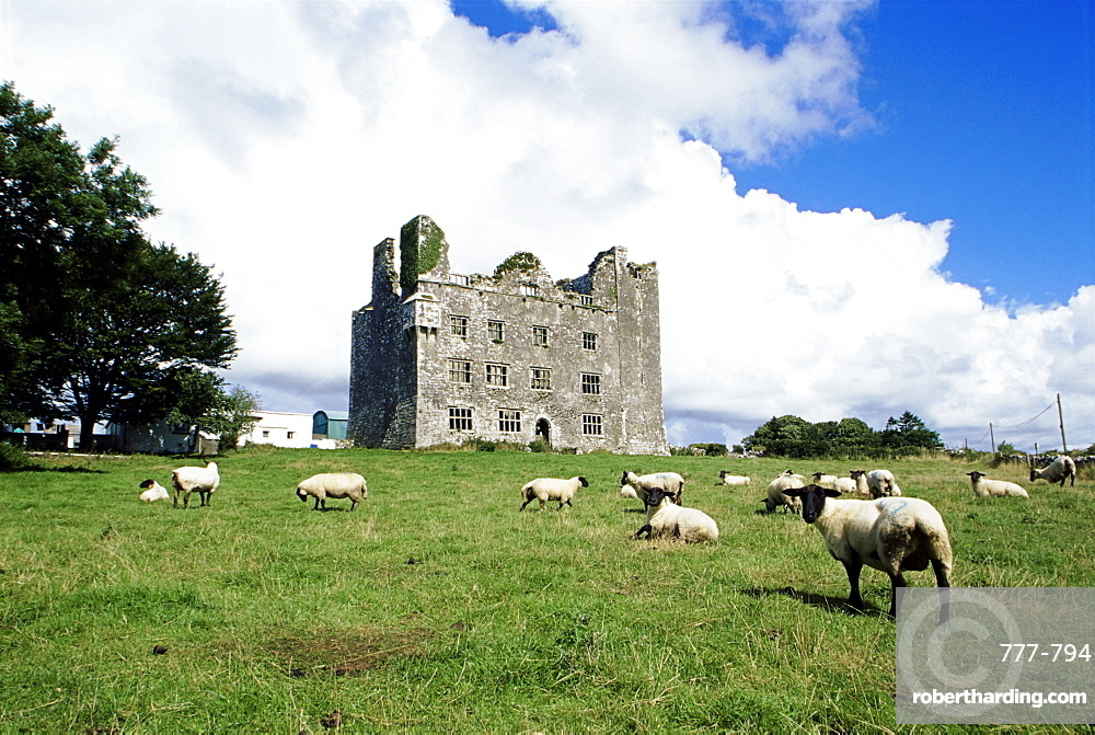 Leamaneagh Castle, The Burren, County Clare, Munster, Republic of Ireland, Europe