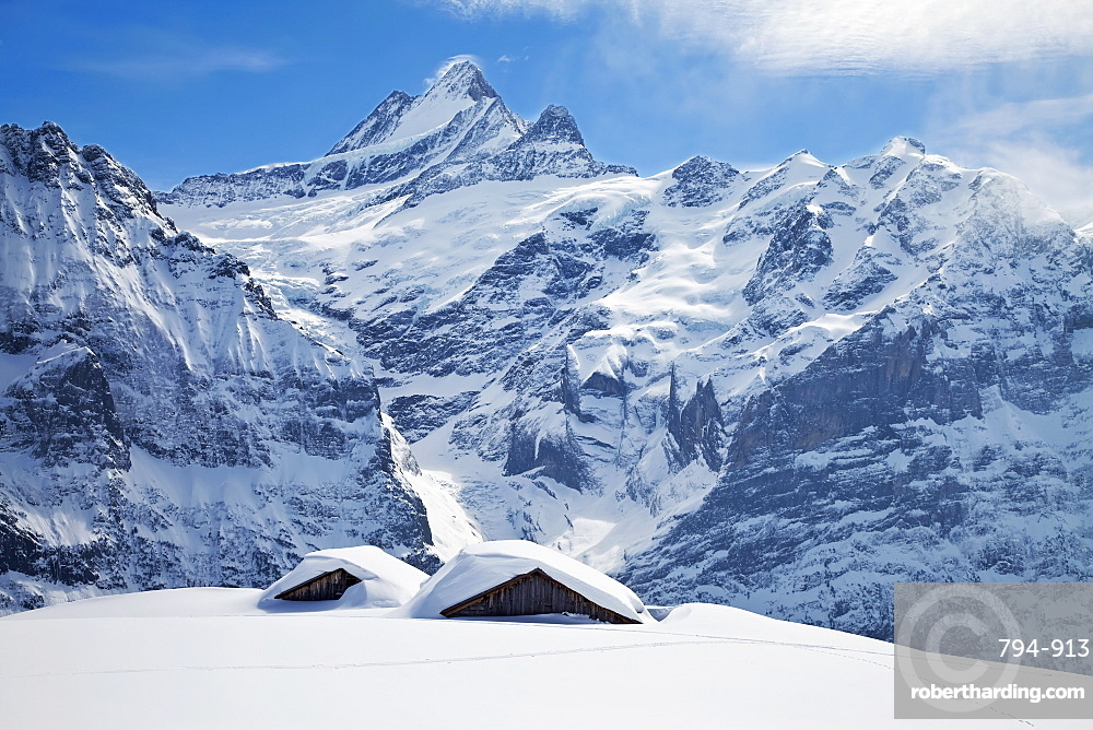 Partially buried buildings on the ski slopes in front of the Schreckhorn mountain, 4078m, Grindelwald, Jungfrau region, Bernese Oberland, Swiss Alps, Switzerland, Europe